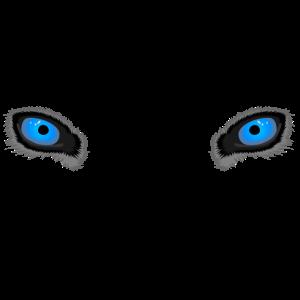 Tiefblaue Wolfsaugen