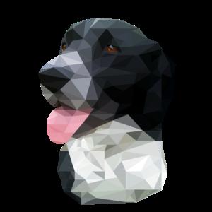 Canis Maximus