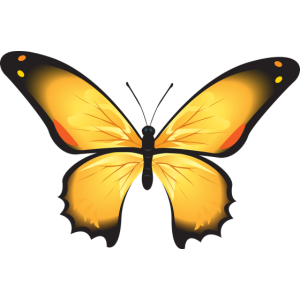 Gelber Schmetterling Geschenk Idee