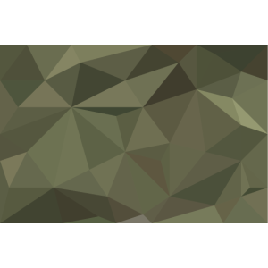 Polygon Camouflage