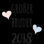 Großer Bruder 2018