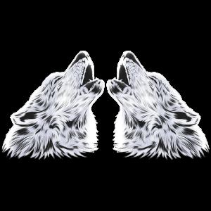 Wolf Wölfe Raubtier Rudel Hunde Geschenk