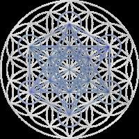 METATRONS WÜRFEL - Blume des Lebens