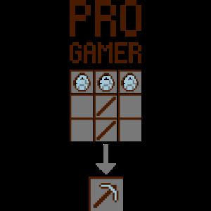 Profi-Spieler 2