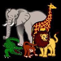 Tiere Safari bunt Cartoon Krokodil Affe Elefant