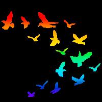 Vogelschwarm Vögel Regenbogen