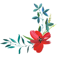 rote Blume - Flower