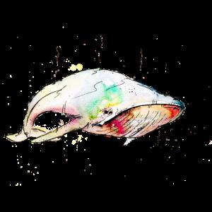 aquarell whale