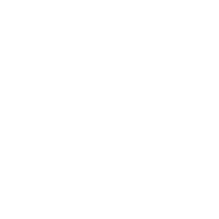 Winning is for the birds - usa eagle