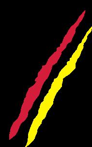 Fan-Shirt: Kratzer Flagge Deutschland - Fußball