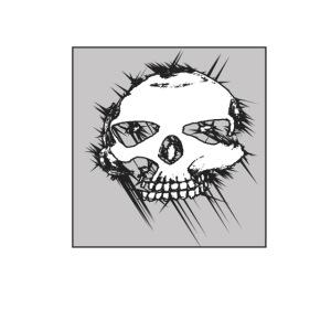 calavera gris