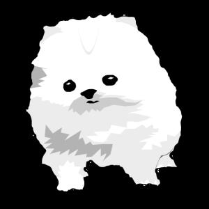 Suesser Kleiner Hund Welpe