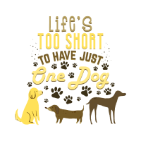 Life's too short to have just one dog