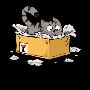 Kätzchen Katze Box Karton Kiste Miezekatze Mieze