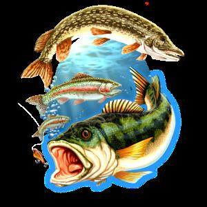 FID - Fishing 3 Fische getrennt mit Sonne unter Wasser - Angler Design - RAHMENLOS Geburtstags Gesch