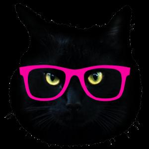 schwarze Katze fantastische Sonnenbrillen