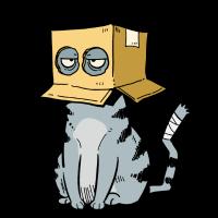 KatzeKiste