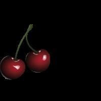 Cherry Lady / Geschenk Idee