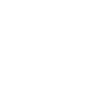 Heraldisches Wappen mit Löwen