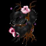 Black Wolf Spring