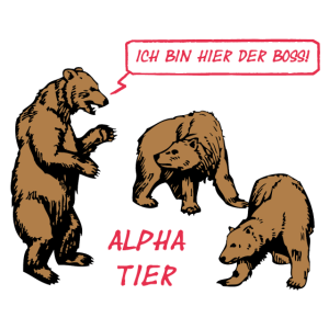 Alpha Tier #1