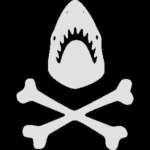 Haifisch-Knochen