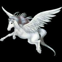 Pegasus Fliegen