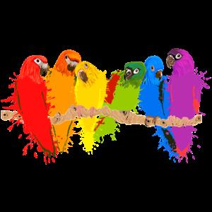 Bunte Papageien-Schar