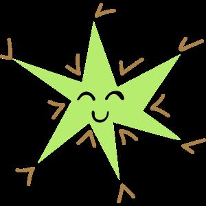 Glücklicher Stern