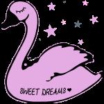 swan sweet dreams
