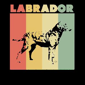 Labrador - Vintage