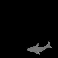 Plastik nervt Naturschutz Umweltschutz Hai Umwelt