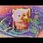 Gattino scintillante nella tasca dei jeans