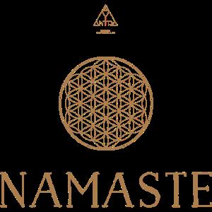 Namaste 7
