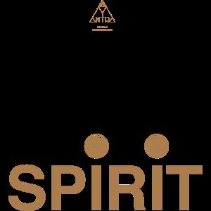 Spirit 6