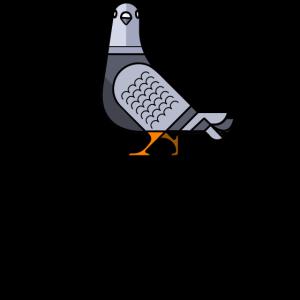 Aubstd Pigeon