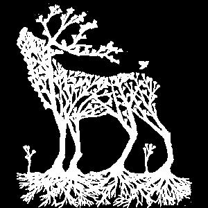 Wald-Hirsch in weiß