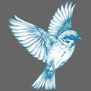 Vogel Bird Flügel