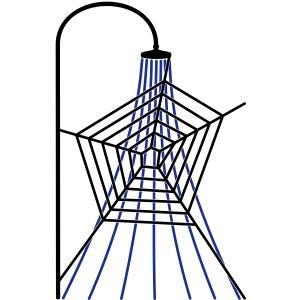 Web-Brauser