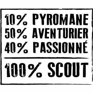 100% SCOUT - 10% pyromane 50% aventurier 40%