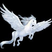 Pegasus 8