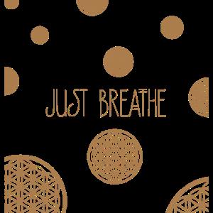Breathe 27