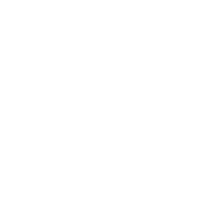 MADE IN 1995 AGED TO PERFECTION