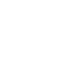 MADE IN 1976 AGED TO PERFECTION