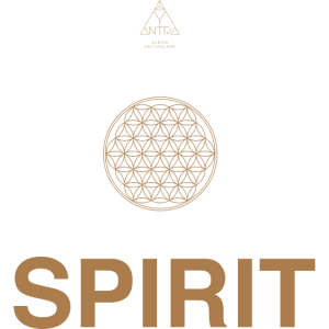Spirit 8