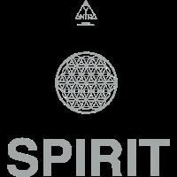 Spirit 7