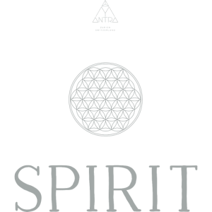 Spirit 1