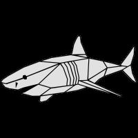 Polygone shark