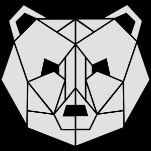 Polygone Bear