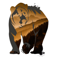 grizzly Braunbär Teddy Bär Rocky Outdoor wild Tier